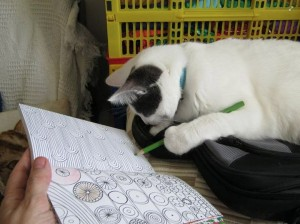CatColouringIn